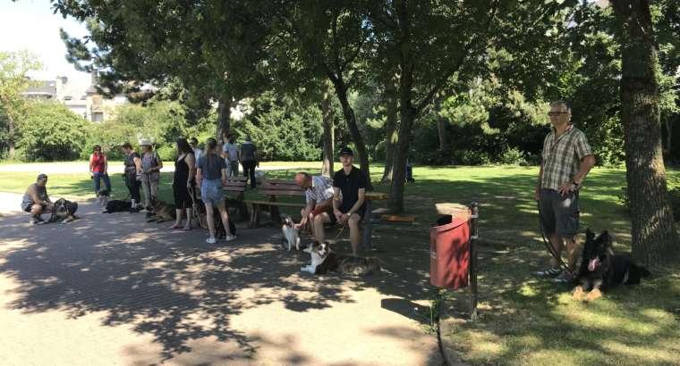 Entraînement en groupe ext. dans le Parc de Merl
